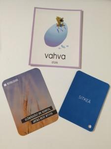 Vahvuuskortit, hyvän mielen kortit ja ideapaikkakortit